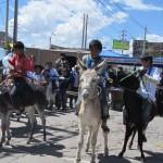 Moquegua Realizan carrera de burros por aniversario Caneteenlinea.com